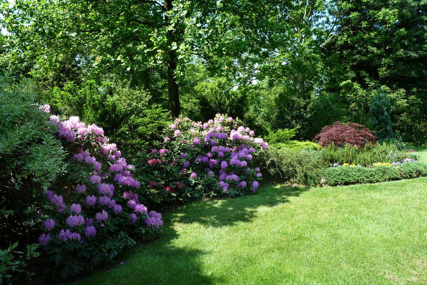 Image Result For Home And Garden Show A