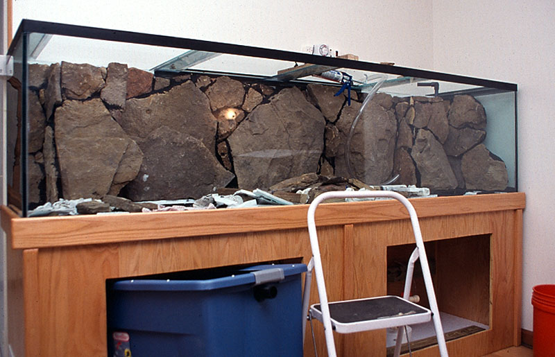 Diy Fish Tank Background Ideas Home Design